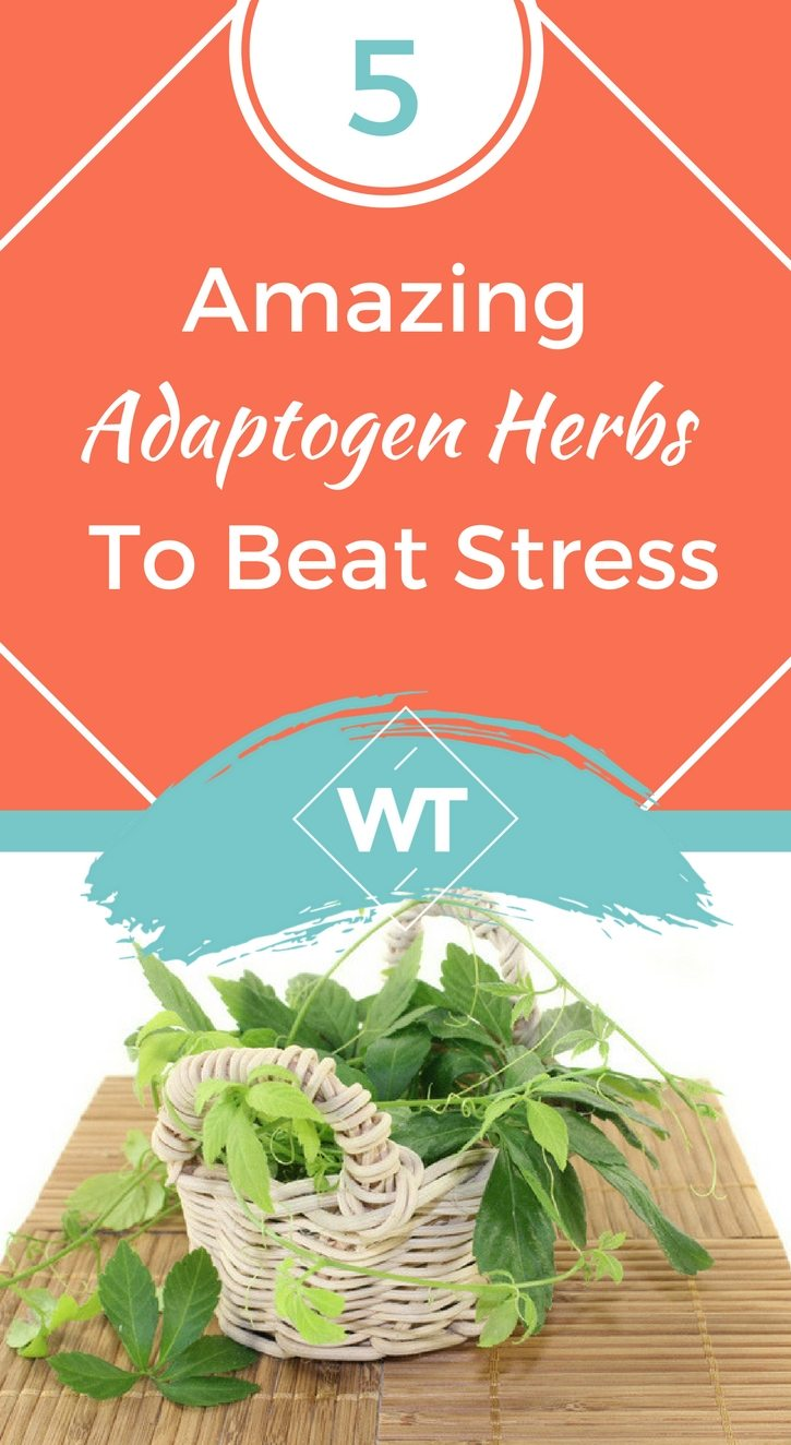 5 Amazing Adaptogen Herbs To Beat Stress
