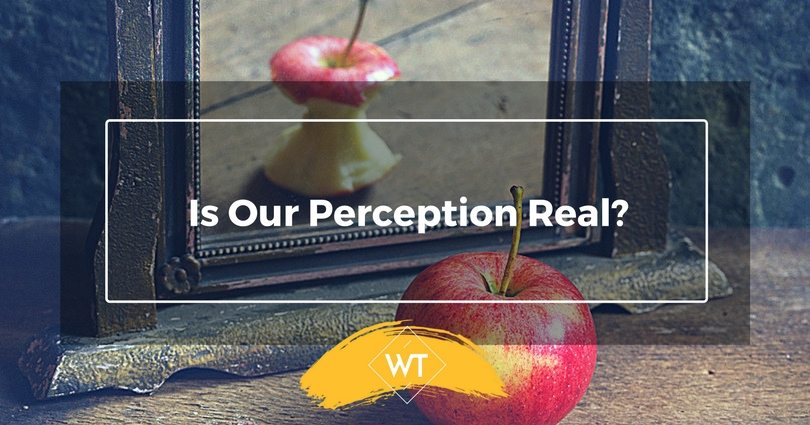 Is Our Perception Real