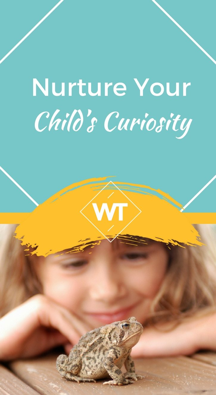 Nurture Your Child's Curiosity